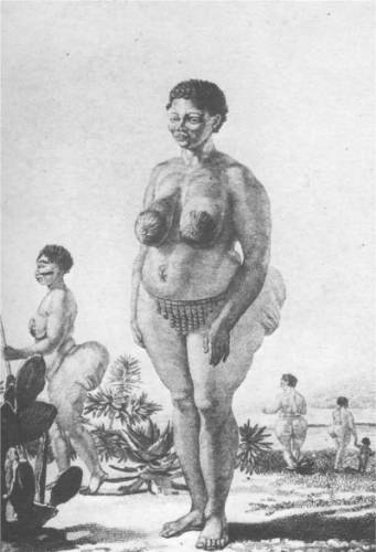 Saartjie Baartman on wikipedia